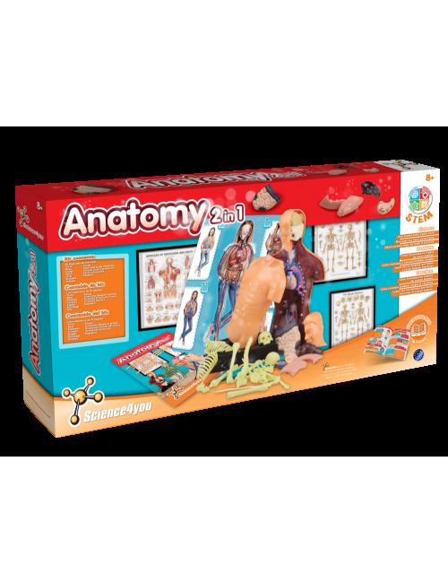 Corpo Humano - Anatomia 2 em 1