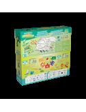 Dino Rocks - Triceratops