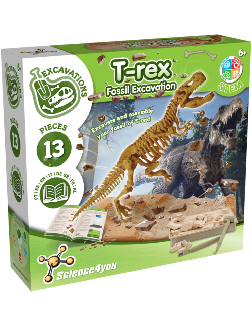 Escavações Fósseis - T-Rex