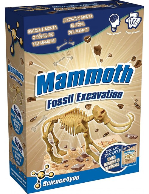 Escavações Fóssil - Mamute